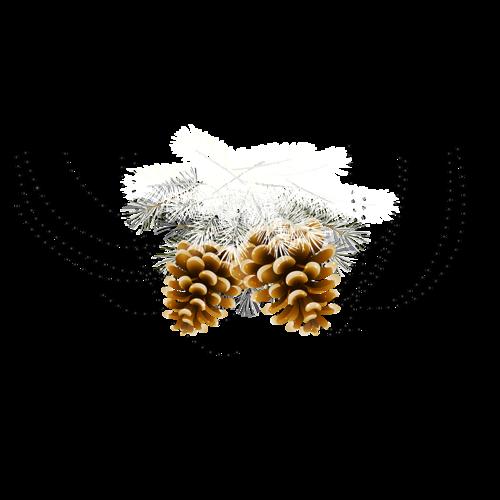 tubes-nature-noel-246