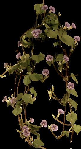 tubes_fleurs_tiram_703
