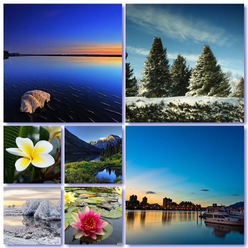 Most Wanted Nature Widescreen Wallpapers # 528
