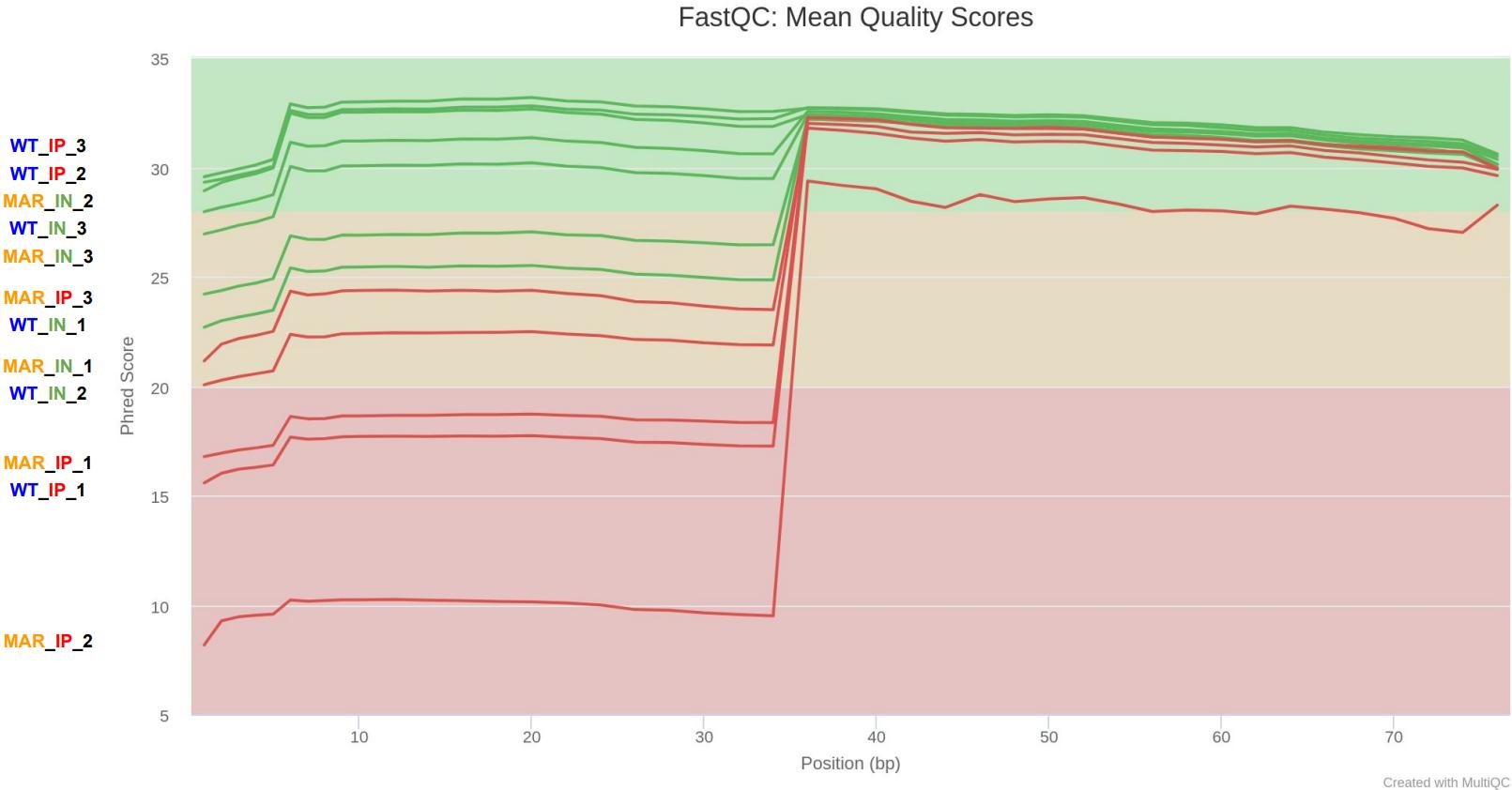raw_mean_qual_scores_multiqc