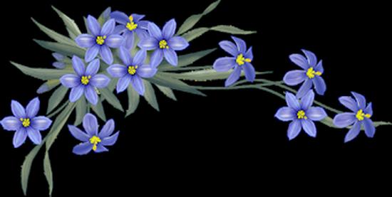 tubes_fleurs_tiram_493