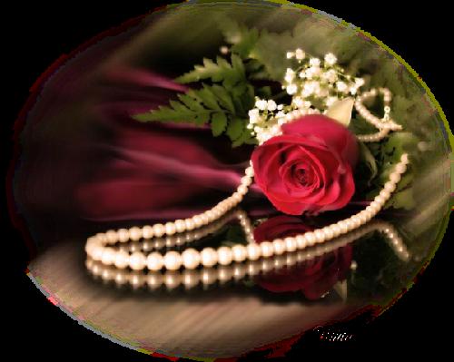 tubes_fleurs_saint_valentin_tiram_87