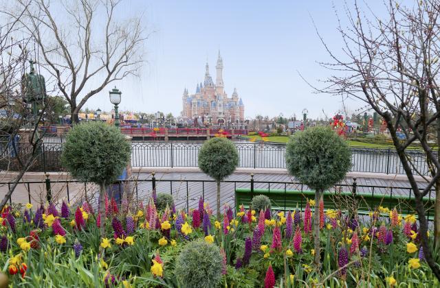 Shanghai Disneyland (2016) - Le Parc en général - Page 39 SDL5