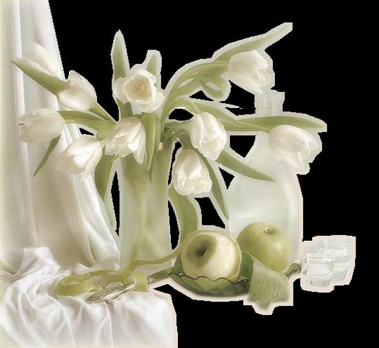 tubes_fleurs_tiram_464