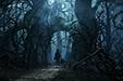 Équipe n°12 : Castiel Fawkes, Jezequel B. Marshall & Jaineba Ngwari Dark-Forest