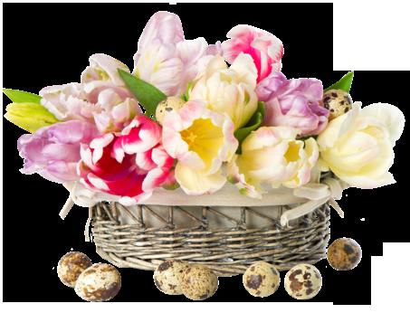 fleurs_paques_tiram_152