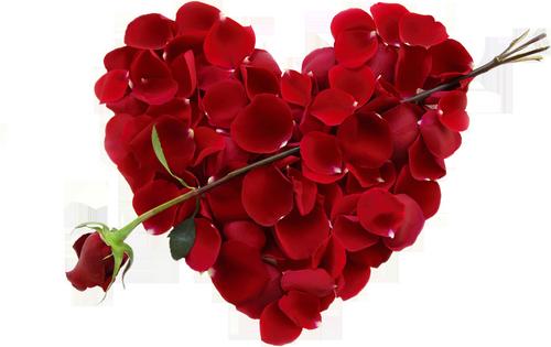 coeur_saint_valentin_tiram_405