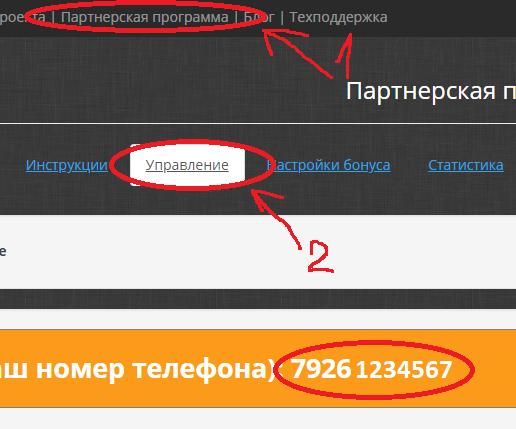 Код регистратора партнёра