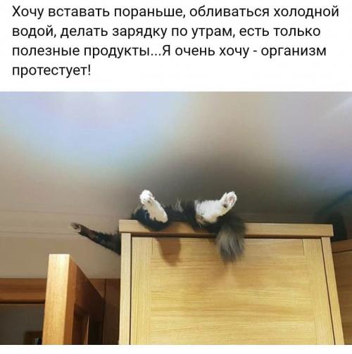 https://image.ibb.co/eWEKYy/20180518_094727.png