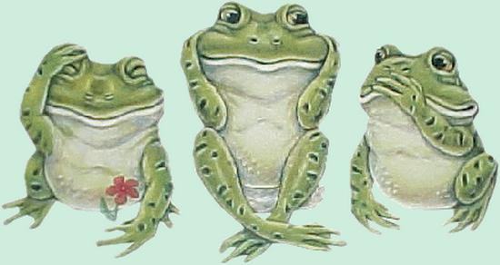 grenouille_tiram_123