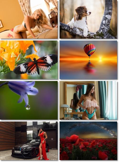 Widescreen for your desktop # 83