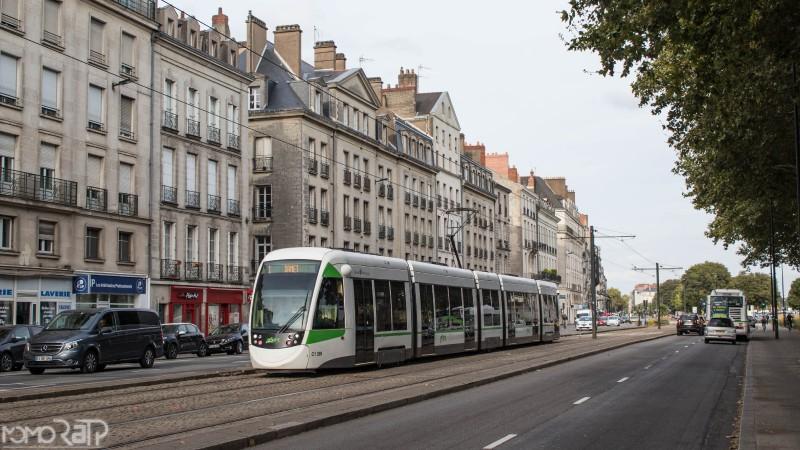 Nantes (44) - TAN - Page 3 IMG_9915