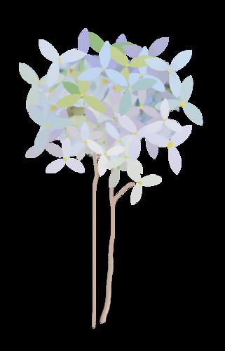 fleurs_paques_tiram_71