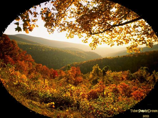 paysage_tiram_53