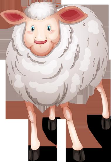 mouton_tiram_3