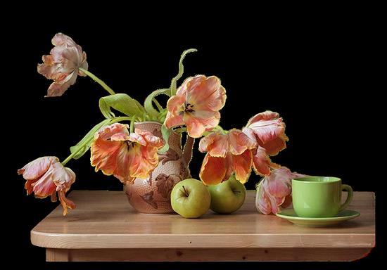 tubes_fleurs_tiram_132