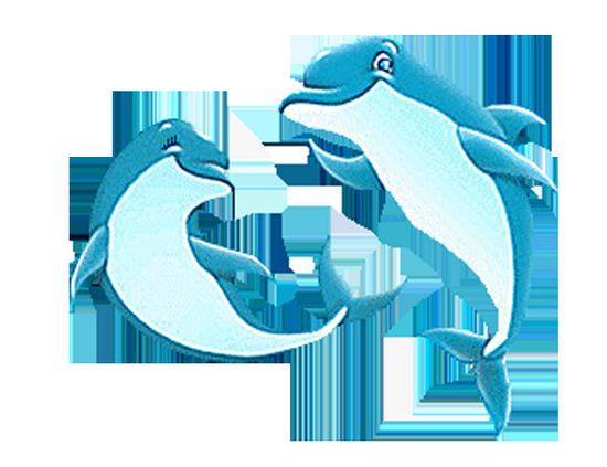 tubes_dauphins_tiram_168