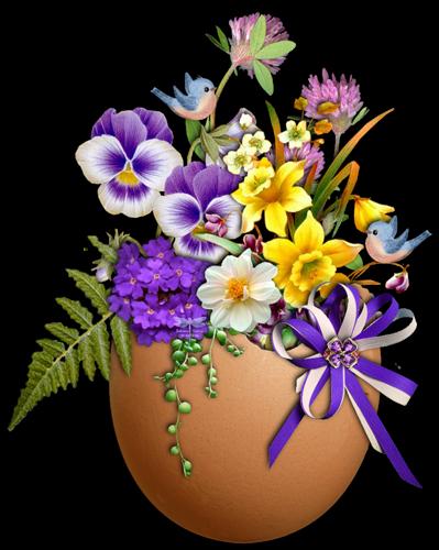 fleurs_paques_tiram_198