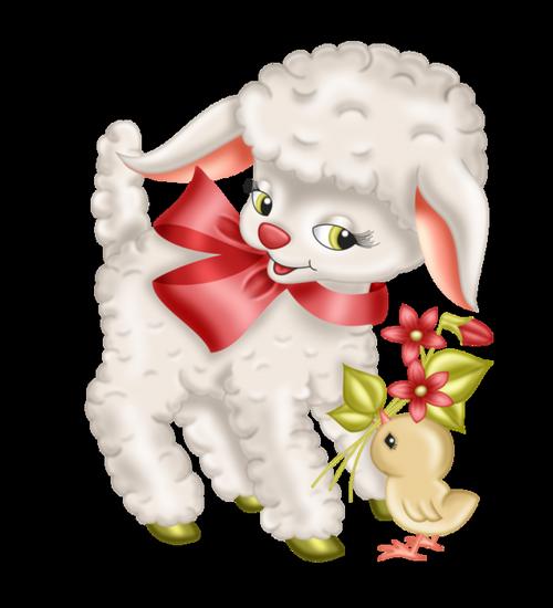mouton_tiram_17