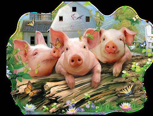"""Résultat de recherche d'images pour """"tubes psp cochon"""""""