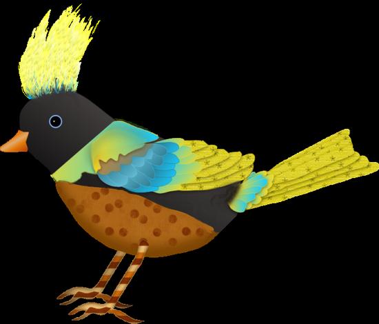 tubes_oiseaux_tiram_219
