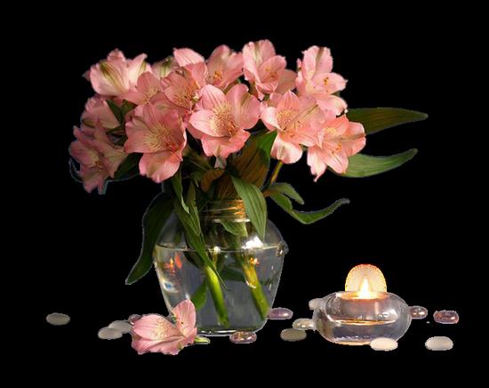 tubes_fleurs_tiram_136