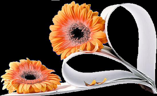 tubes_fleurs_tiram_239