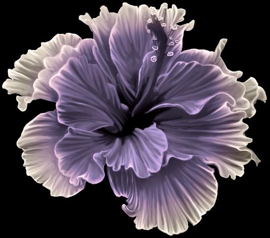 tubes_fleurs_tiram_521