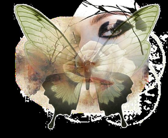 tubes_papillon_tiram_166
