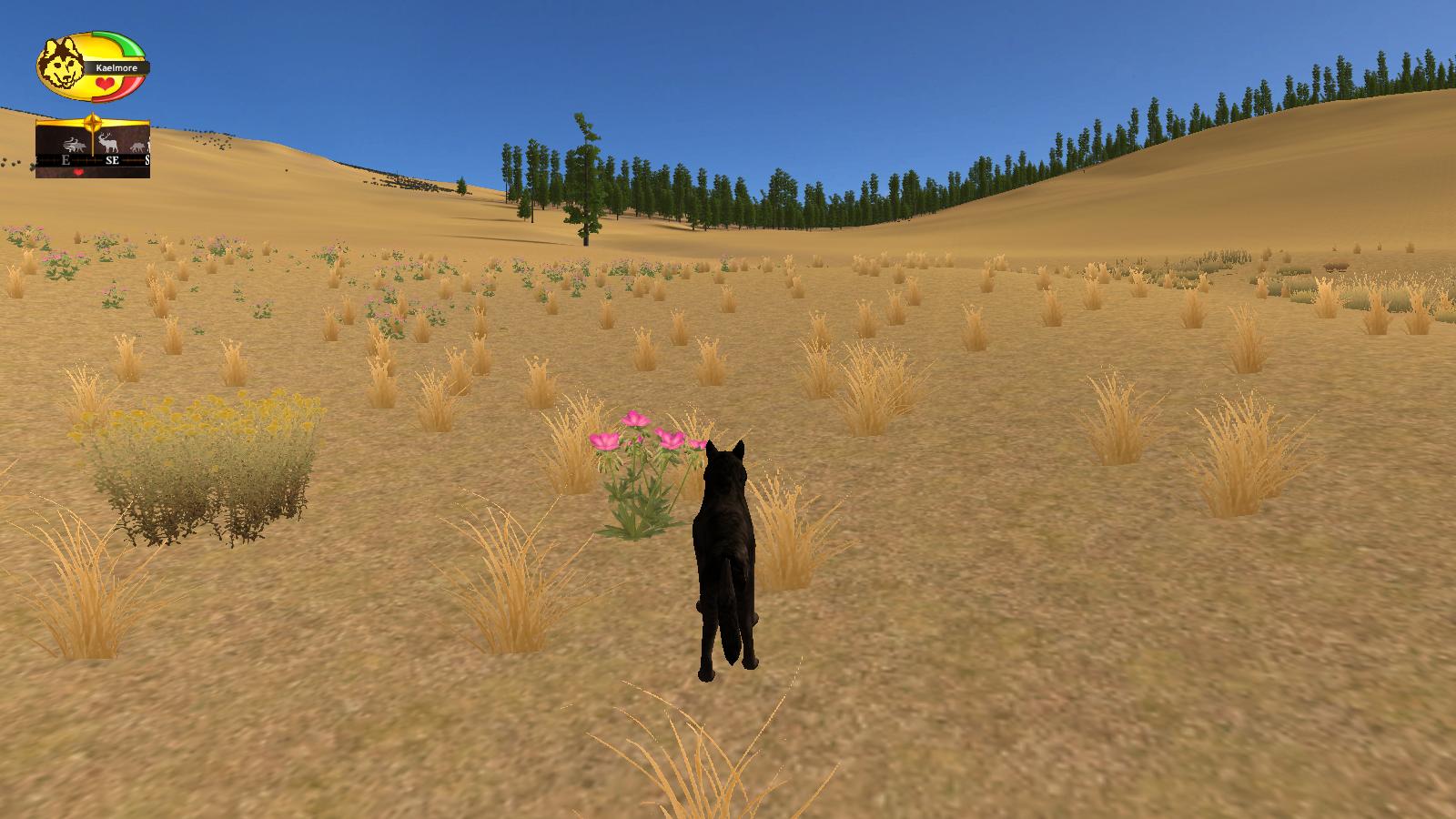 Screenshots! Wolf_Quest_Screenshot_16