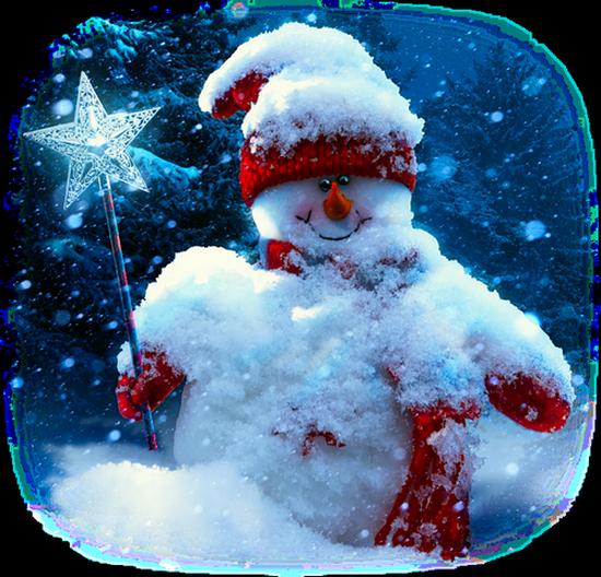 bonhommes-de-neiges-tiram-383