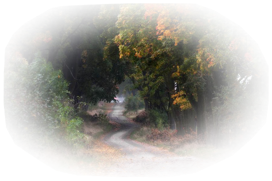 paysage_tiram_750