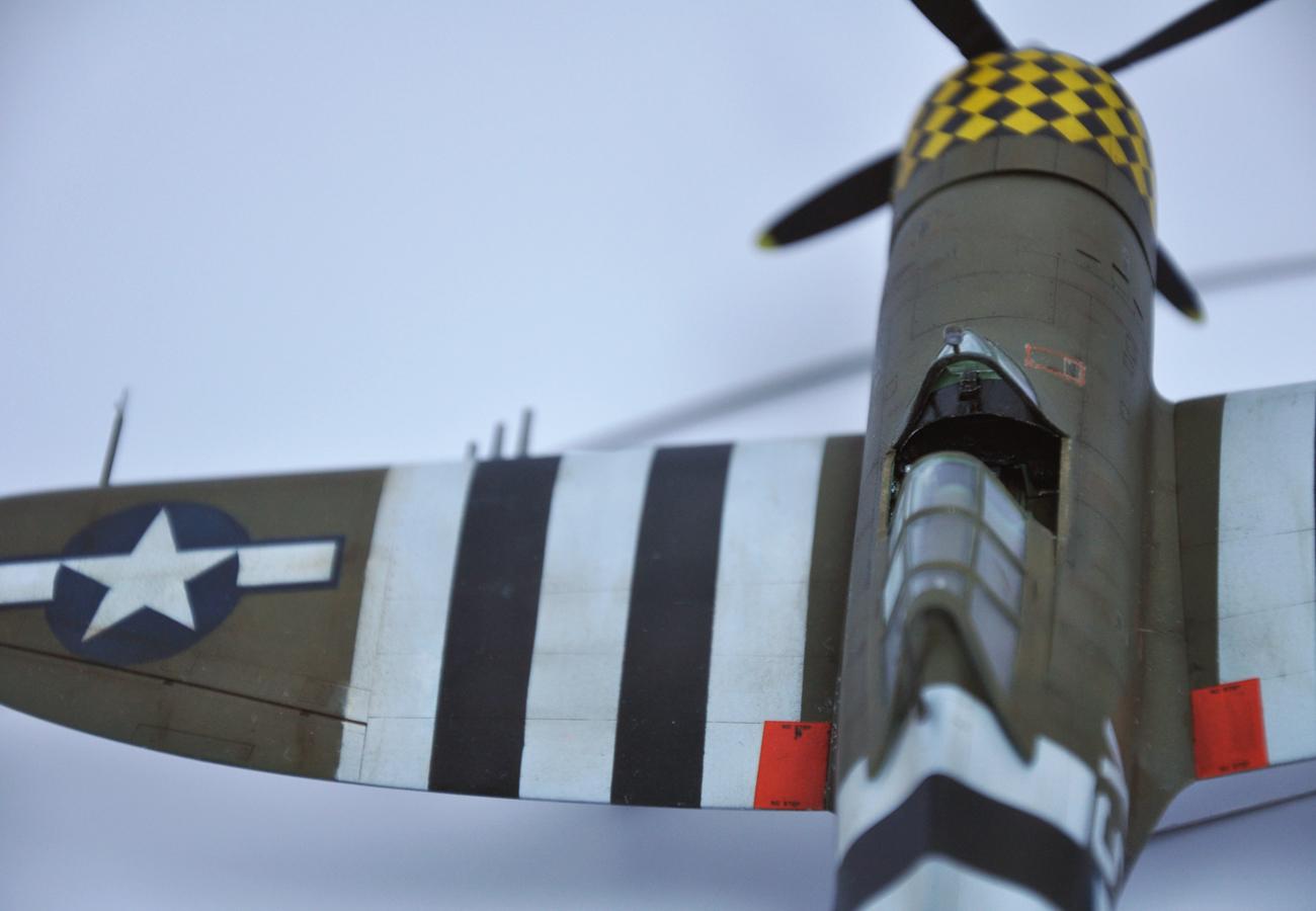 P-47D 353 FG/352FS (projet AA) DSC_0164b
