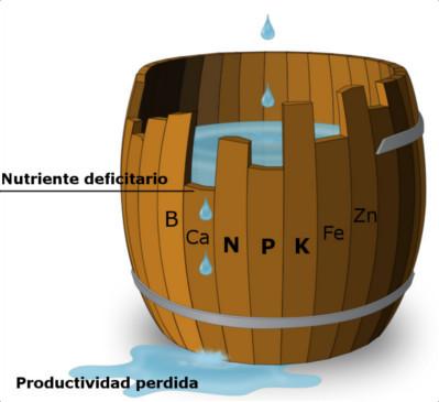 Barril de Liebig, ley del mínimo de Liebig, nutriente deficitario, límite de máxima productividad, N, P, K, B, Ca, Fe, Zn
