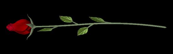 tubes_fleurs_tiram_349