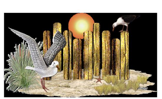 tubes_oiseaux_tiram_98