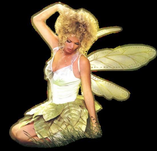 tubes_fairy_tiram_164