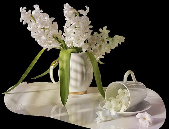 tubes_fleurs_tiram_249