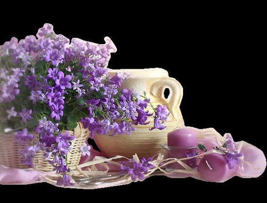 tubes_fleurs_tiram_476