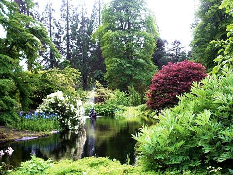 Tales of Home [7] - Page 9 Benmore-botanic-garden