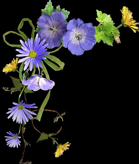 tubes_fleurs_tiram_10