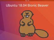 Ubuntu 18 04 Bionic Beaver 180x135