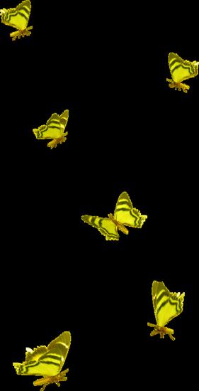 tubes_papillon_tiram_501
