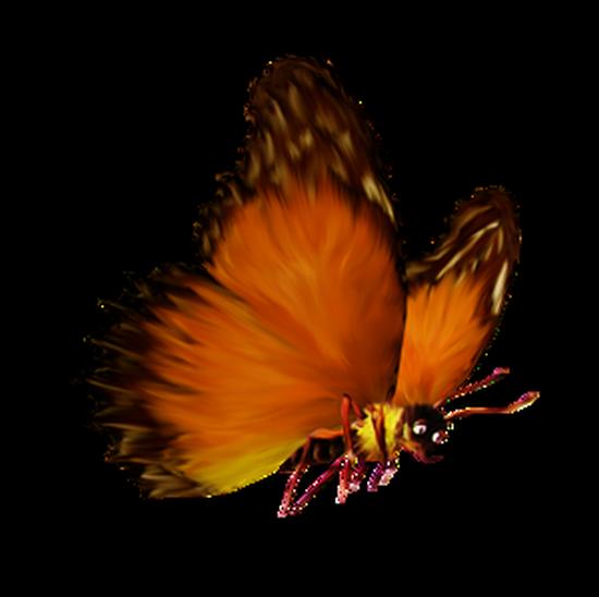 tubes_papillon_tiram_261