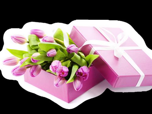 tubes_fleurs_saint_valentin_tiram_133