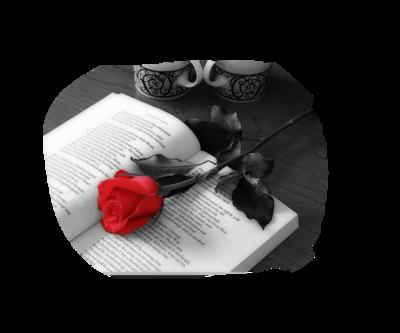 tubes_fleurs_saint_valentin_tiram_276