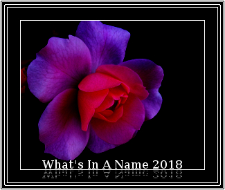The What's In A Name 2018 reading challenge logo