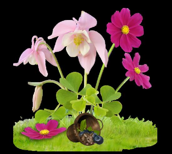 tubes_fleurs_tiram_294