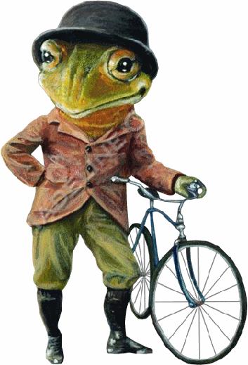 grenouille_tiram_30