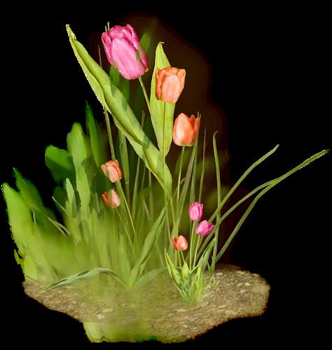 tubes_fleurs_tiram_557
